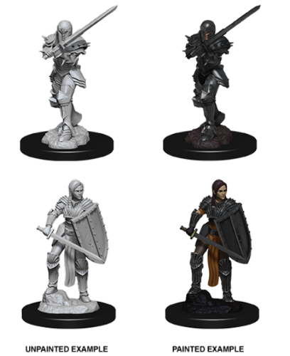 Female Human Fighter: D&D Nolzur's Marvelous Miniatures